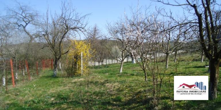 Teren de Vanzare in Zona Platoului Cornesti