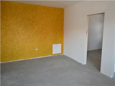 2 Rooms Apartment for Rent in Santana de Mures