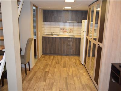 1 Room Apartment with Utilities Included for Rent in Ultracentral Area