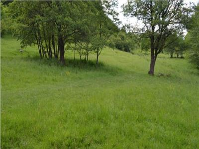 Land for Sale in Sovata  Area