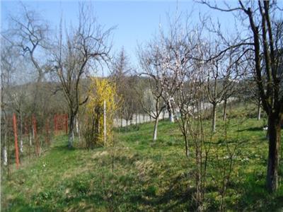 Land for Sale in Platoului Cornesti Area